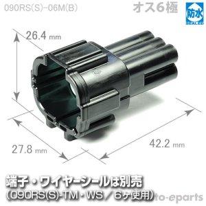 画像1: 090型RS防水/オス6極カプラ(B)