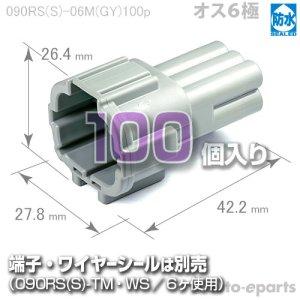 画像1: 090型RS防水/オス6極カプラ(GY)100pack