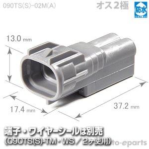画像1: 090型TS防水/オス2極カプラ(A)