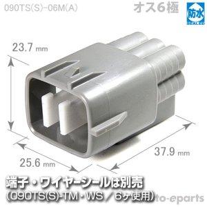 画像1: 090型TS防水/オス6極カプラ(A)