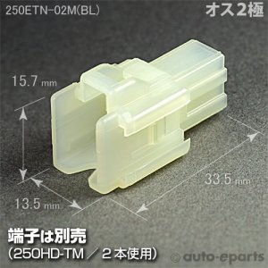 画像1: 250型ETN/オス2極カプラ(ブロックタイプ)