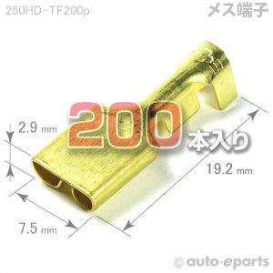 画像1: 250型HD/メス端子200pack