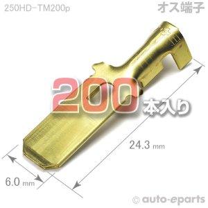 画像1: 250型HD/オス端子200pack