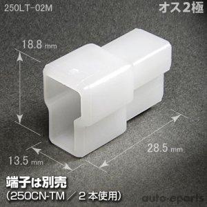 画像1: 250型LT/オス2極カプラ(ロックなし)