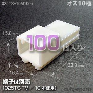 画像1: 025型TS/オス10極カプラ100pack