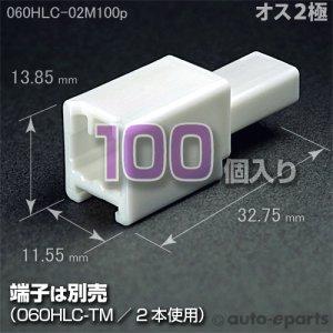 画像1: 060型HLC/オス2極カプラ100pack