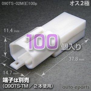 画像1: 090型TS/オス2極カプラ(E)100pack
