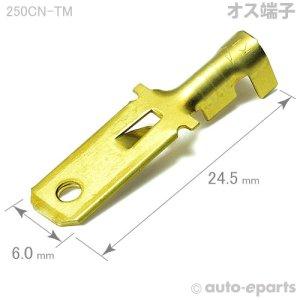 画像1: 250型CN/オス端子